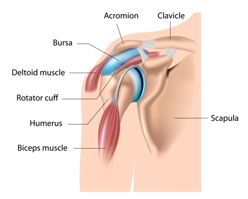 Treatment for Shoulder Bursitis in Los Angeles, CA
